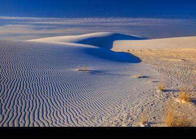 2019 bosque white sands 2