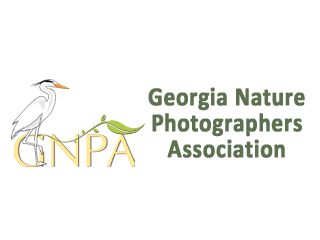 GNPA - Georgia Nature Photographers Association