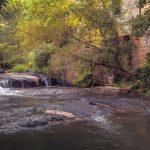 GWINNETT CHAPTER | 'Sell's Mill Park' Field Trip