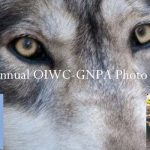 Oatland Island/GNPA Photo Contest Artist Reception and Awards Announcement