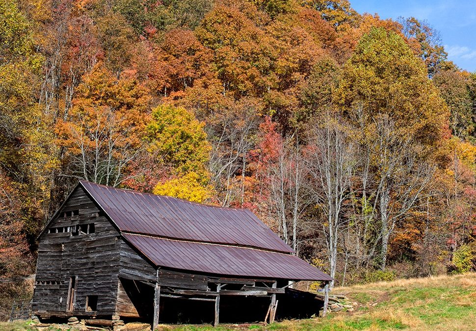 ANCIENT BARNS PHOTOGRAPHED IN PEAK FALL COLOR!!!