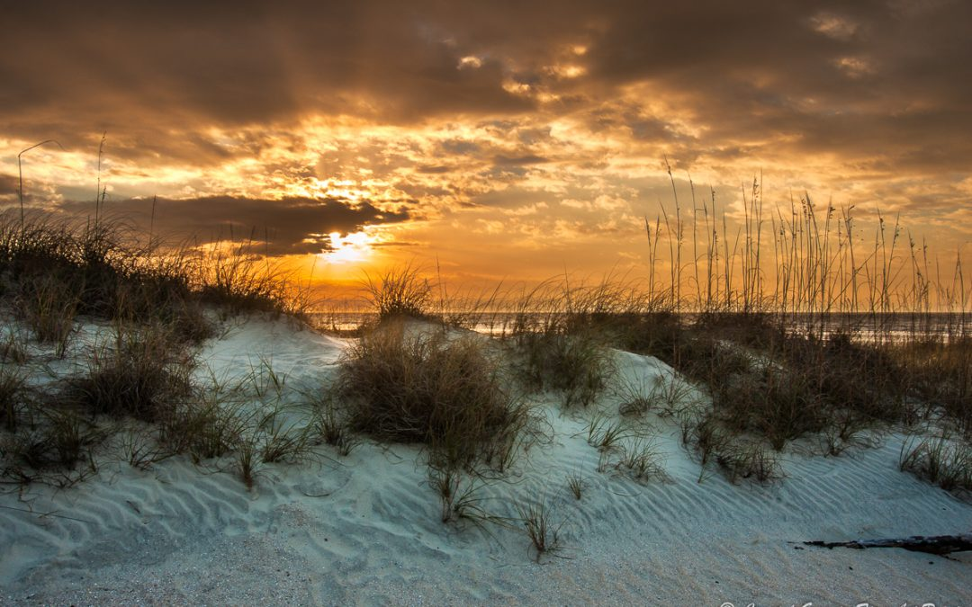 Jekyll Island – Sunsets to Sunrise Workshop in August 2020