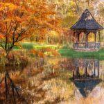 Fall Foliage at Gibbs Gardens