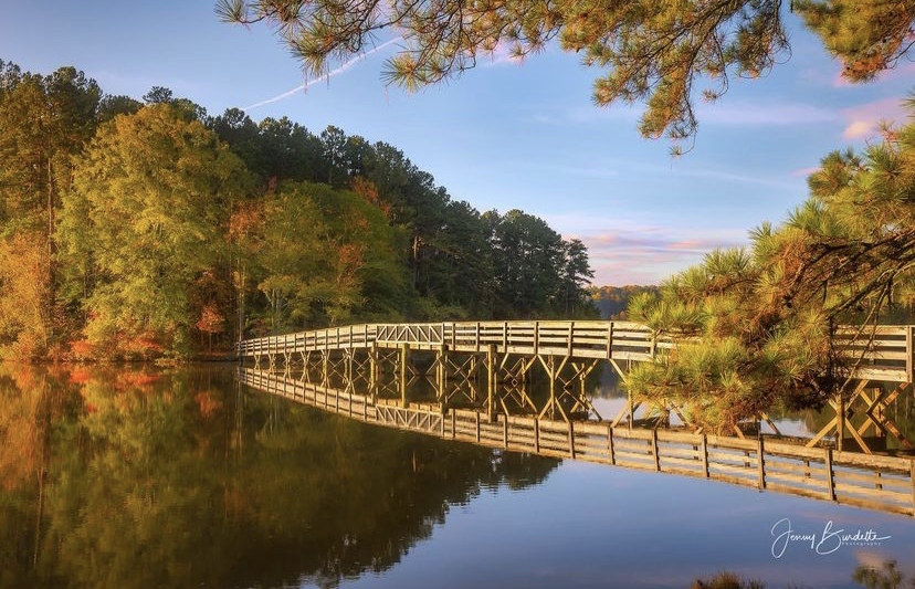 Current Projects – Friends of Georgia State Parks & Historic Sites